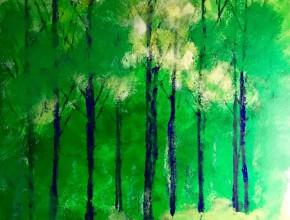 2238 Umidità nel bosco